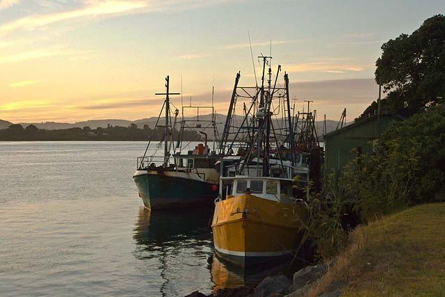 640px-Abaconda_Tauranga-Boat_Sunrise