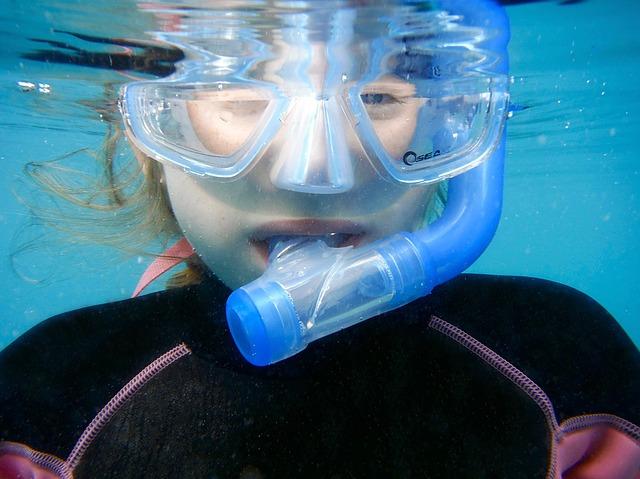 snorkelling-1488316_640