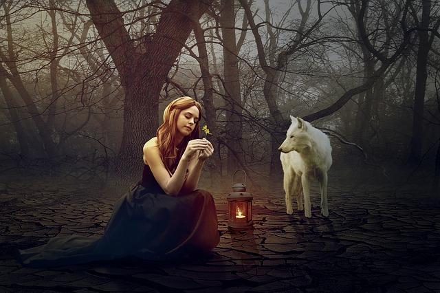 wolf-1594637_640