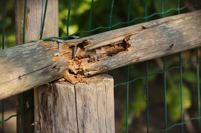 wood-1603144_640