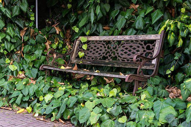 bench-seat