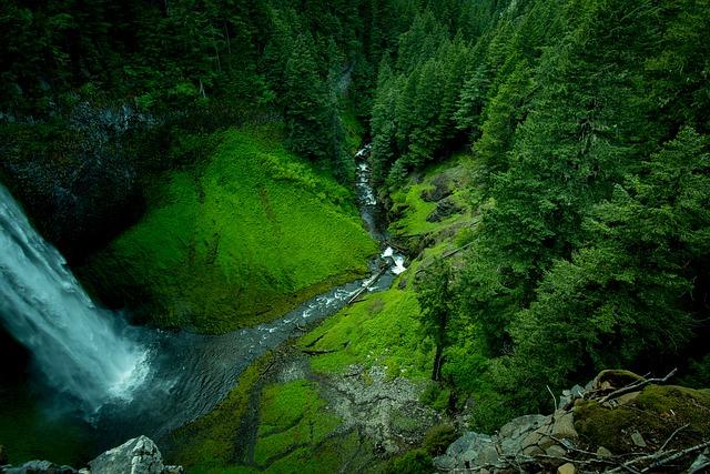 creek-1854214_640
