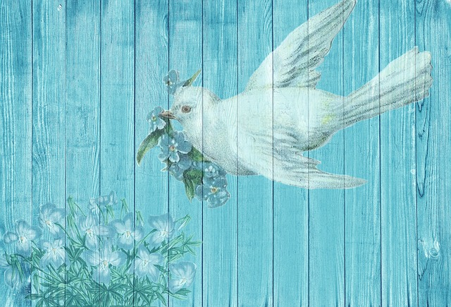 dove-1861791_640