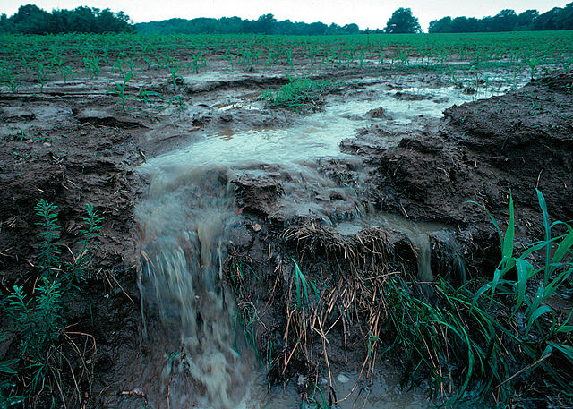 640px-runoff_of_soil__fertilizer