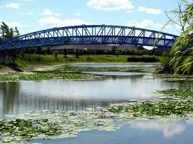blue_heron_bridge_2699446615