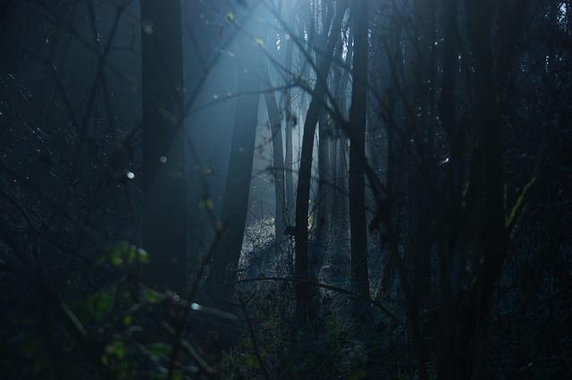 dark-1936954_640