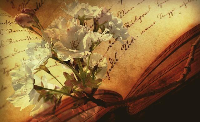 book-2808775_640