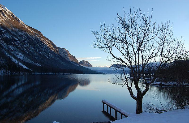 800px-Bohinjsko_jezero_2