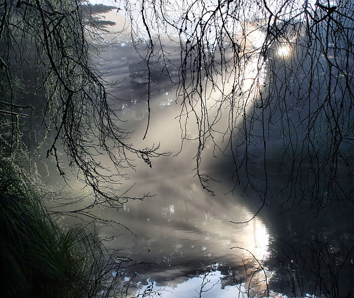 713px-Crepuscular_rays_with_reflection_in_GGP
