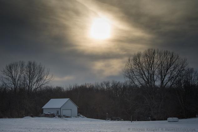 low-winter-sun-2