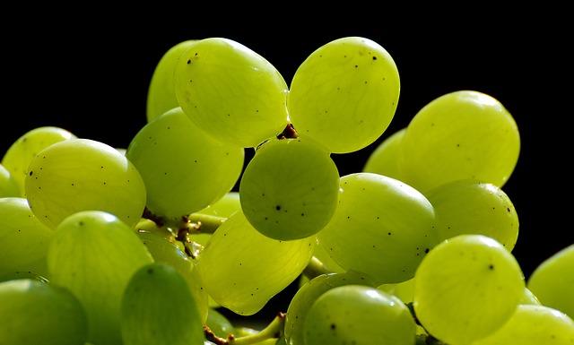 grapes-3294425_640