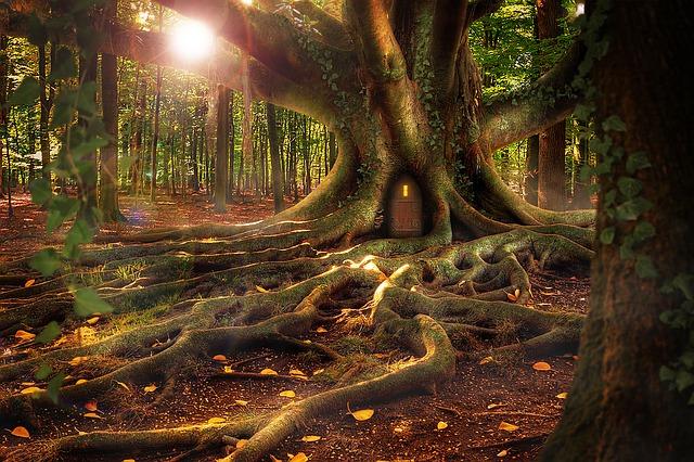 treehouse-1308108_640
