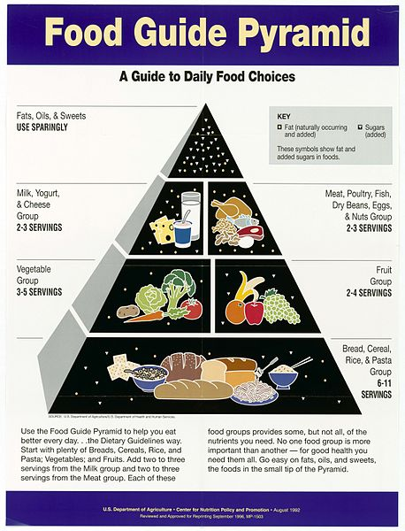 Food_Guide_Pyramid-_A_Guide_to_Daily_Food_Choices
